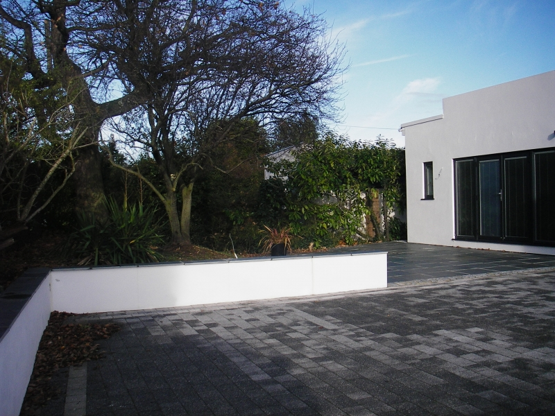 Contemporary front garden (6)