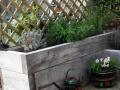 Small garden (5)