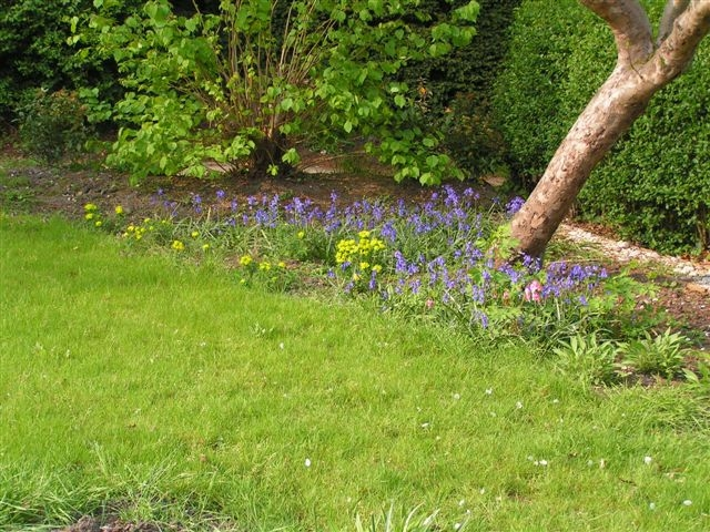 Planting design first spring (1)