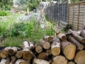 Log wall for wildlife