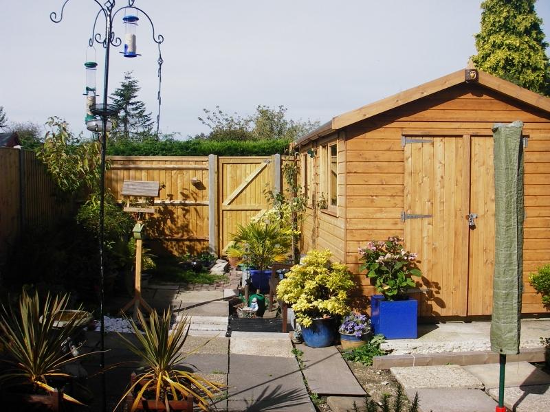 Small garden before (2)