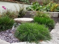 8 small garden planting