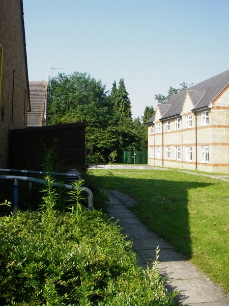 St Marks Hospital physiotherapy garden before (3)
