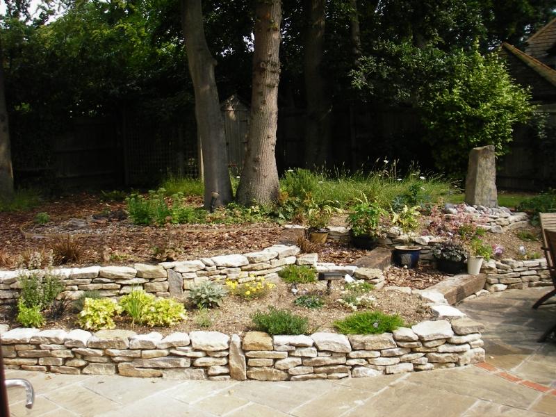 Family garden (8)