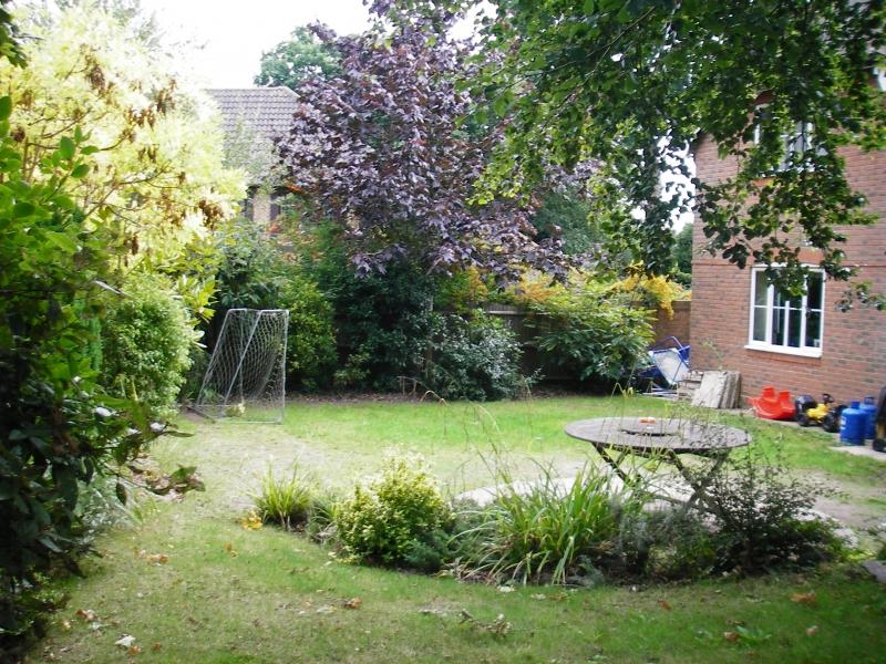 Family garden before (1)