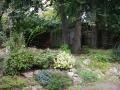 Family garden before (3)